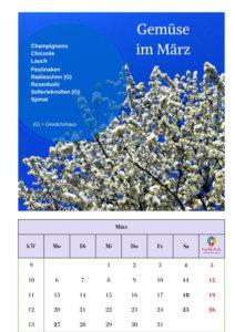 Saisonkalender Gemüse 2017